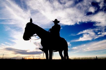 Cowboys e Indiani   Stati Uniti